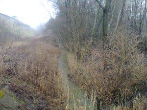 Mogyoródi patak